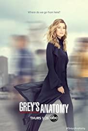 greys anatomy online swesub